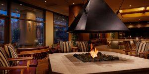 バイオエタノール暖炉「EcoSmart Fire」はサトウキビ等の植物原料を蒸留加工したバイオエタノールを燃料とした暖炉の施工例です