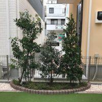 お庭の正面はお隣の玄関に面している為、さりげなく植栽を配置する事で視線をカット